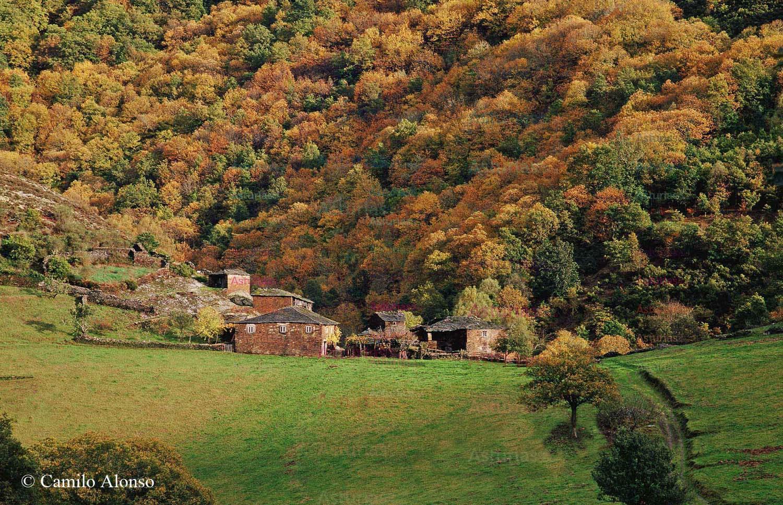Talladas, Santa Eulalia de Oscos